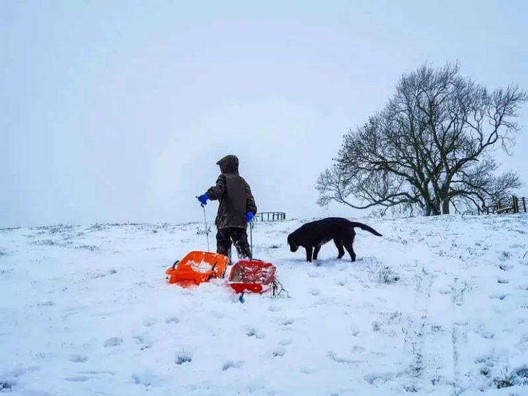 boy with orange sledge and black dog walking up snowy hill