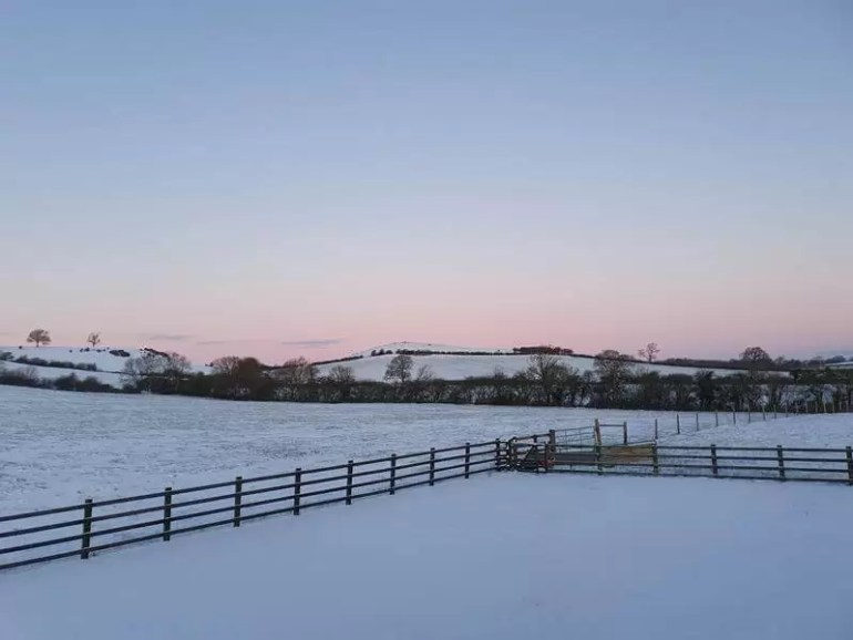pink pastel sky at sunrise over snowy farm land