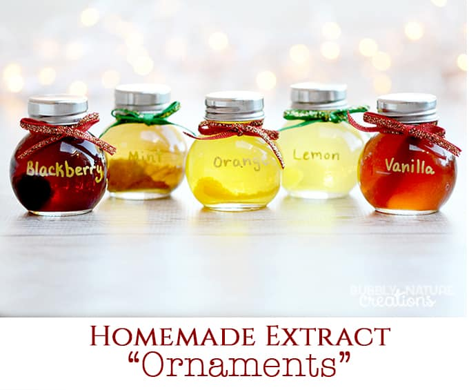 Homemade Extract Ornaments! So cute for Christmas gifts!