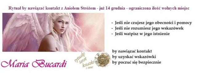 bucardi_naglowek.jpg