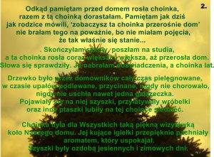 """galeria Aldony konkurs Marii Bucardi """"Twoje drzewo"""""""