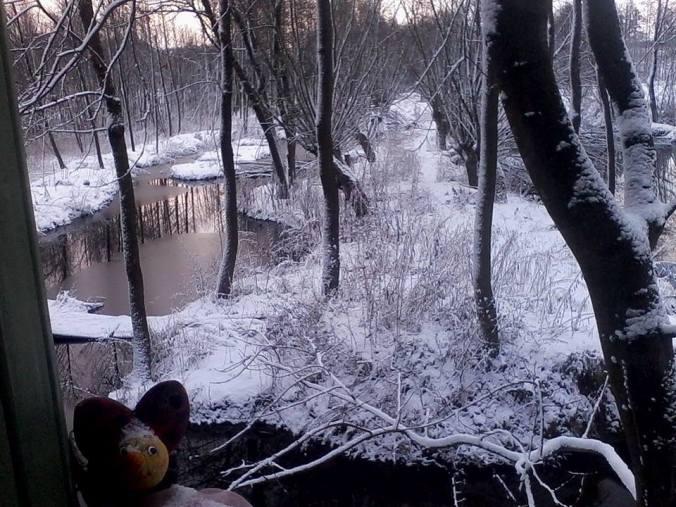 kraina_magdaleny111
