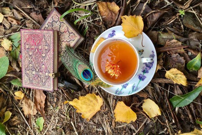 Jesień w Magicznej Oazie zapraszam na filiżankę herbaty