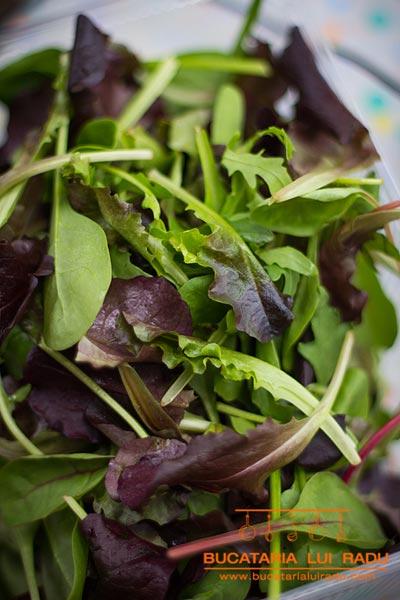 salata ciorba de salata