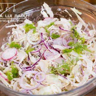 Salata coleslaw cu fenicul, varza alba si ceapa rosie.
