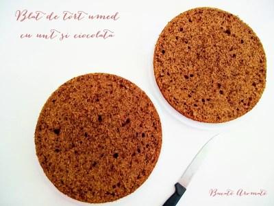 Blat de tort umed cu unt şi ciocolată