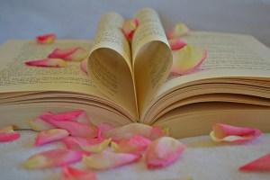 Kurz: Ich liebe Bücher (Foto: MariaGodfrieda / pixaba.de)