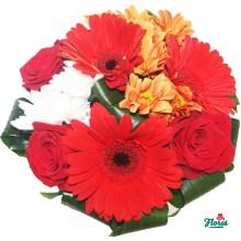 flori-iubire-in-culori-961