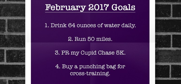 February 2017 | Fitness Goals