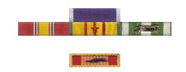 Brevard medals