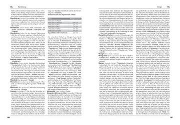 SZ Gourmet Edition: Die Küchenbibel: Die Enzyklopädie der Kulinaristik - 4
