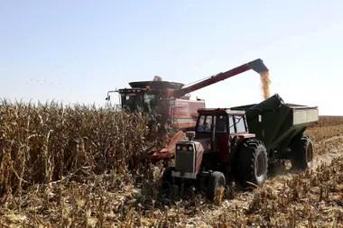 El maíz es uno de los productos clave de la exportación