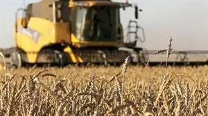 El mercado de maquinaria agrícola en general sigue en expansión.