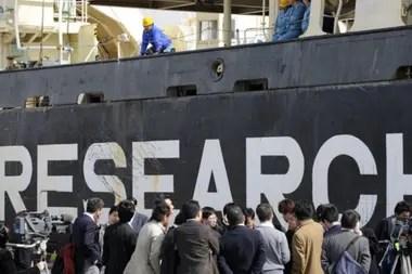 Japón ha capturado entre 200 y 1.200 ballenas cada año bajo el argumento de la investigación científica