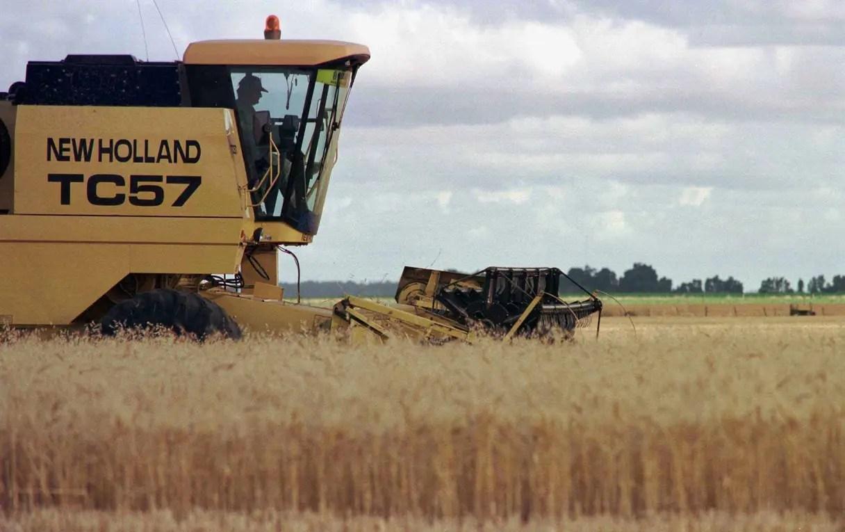El trigo tiene un mercado clave en Brasil.