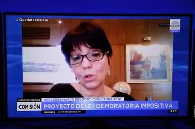 Mercedes Marcó del Pont defendió la moratoria y se negó a hablar de casos particulares