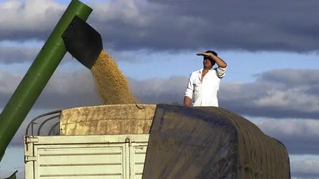 Por segunda jornada consecutiva, el precio de la soja se negoció en alza ayer en el mercado doméstico de granos