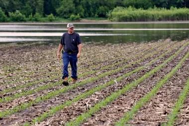 El campo de Jorgenson en Shenandoah, Iowa, tiene una cuarta parte inundada