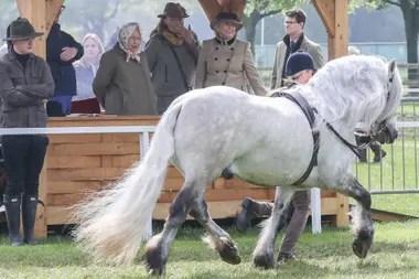Durante los cuatro días de show, la Reina estuvo presente en diferentes momentos: durante la inauguración, en competencias de salto y también, saludando a competidores y a sus caballos