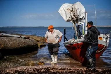 A las 8.15, a bordo de Doña Flor, llegaron los primeros tres pescadores de José Ignacio. Todavía estaban en el mar otras cinco barcas que llegarían a lo largo de la mañana