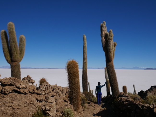 Voyage sportif en Bolivie