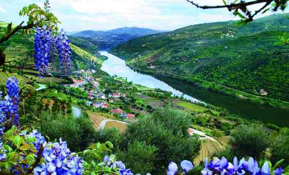 Douro River Valley view, Portugal