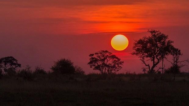 botswana-bucketlisttraveladvisors.com