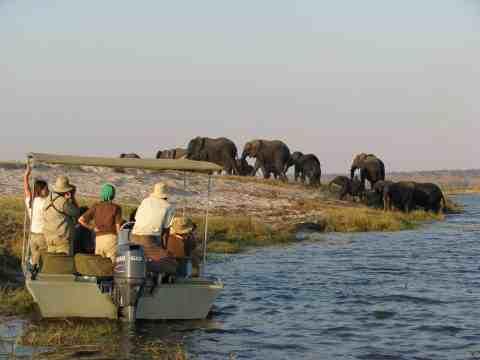 safaribyboat-bucketlisttraveladvisors.com