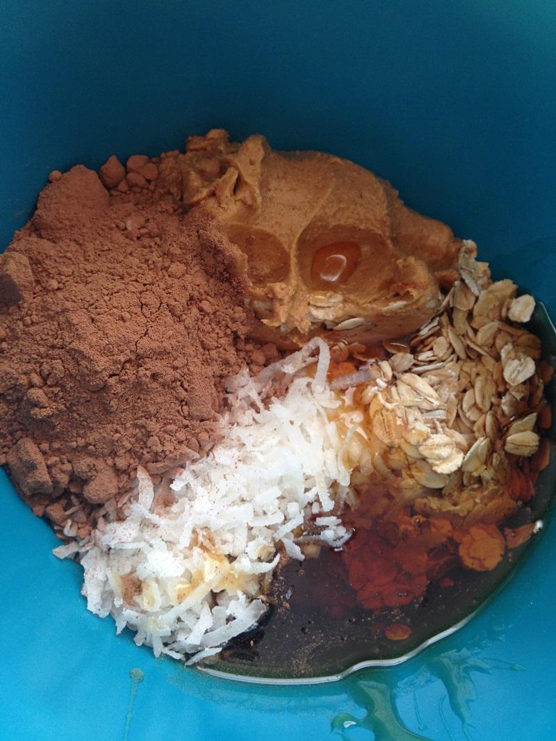 Fudgey Coconut Chocolate Peanut Butter Bites