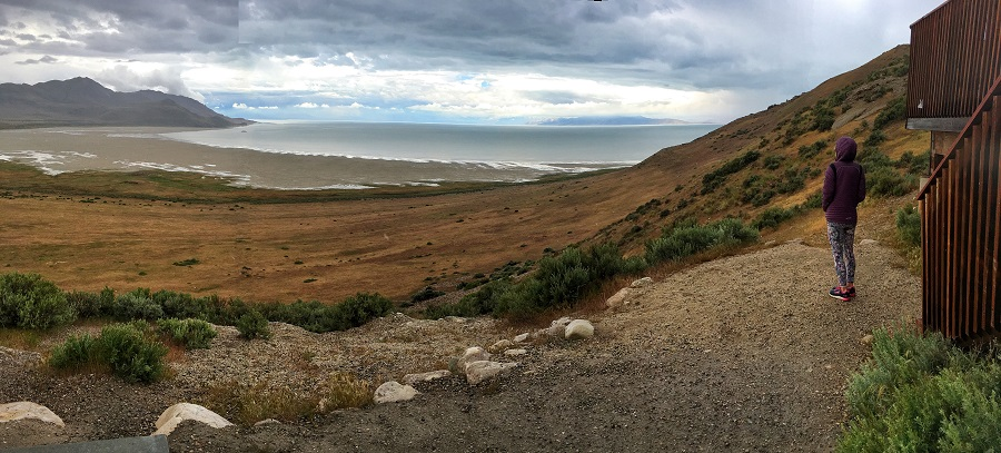 Salt Lake City Travel Guide, Antelope Island