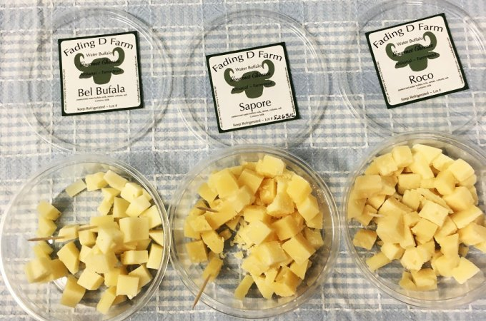 What I Learned About Water Buffalo Cheese and Organic Farming!