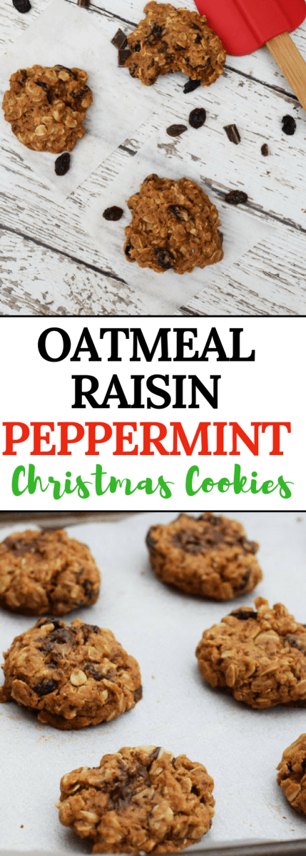 Oatmeal Raisin Peppermint Cookies are the perfect combination of chewy, chocolate and mint just in time for the Holiday Season. Made with oats and whole wheat flour, they offer up a healthy dose of fiber too | Healthy Christmas Cookies | Christmas Cookie Exchange #cookies #christmascookie #oatmealraisincookies #ad