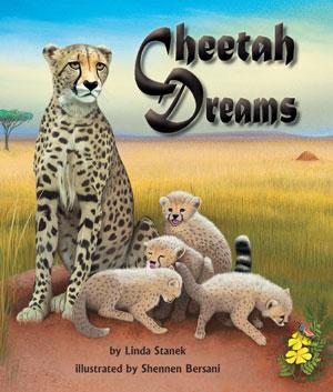 Book Cover Cheetah Dreams