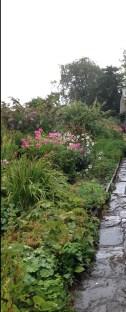 Beatrix Potter's Garden in the Rain