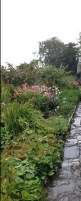 Beatrix Potter's Garden in the Rain