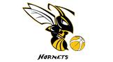 Bucks Hornets