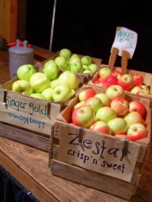 Manoffs apples; photo credit Lynne Goldman