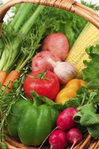 Vegetable Bounty; MSClipArt