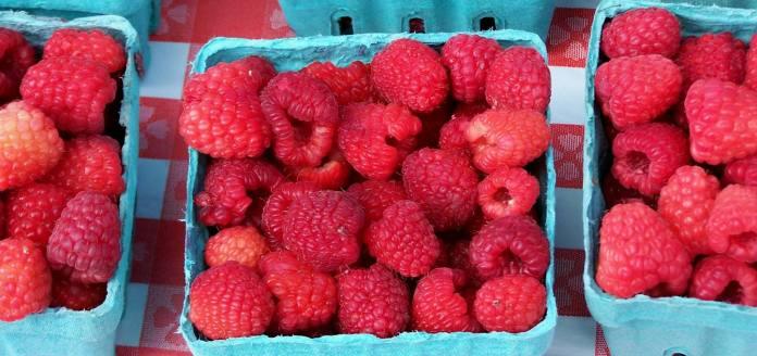 Raspberries; photo credit Lynne Goldman