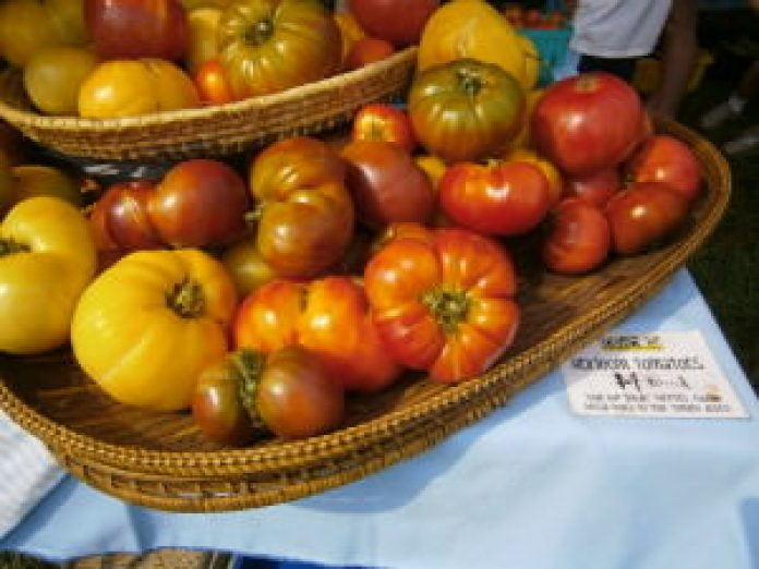 Heirloom tomatoes from Blooming Glen Farm; photo by L. Goldman