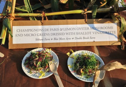 Microgreen & Mushroom salad; photo by LGoldman