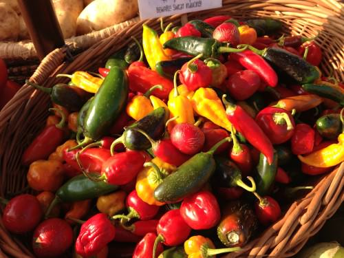 Hot peppers from Blooming Glen Farm; photo credit L. Goldman