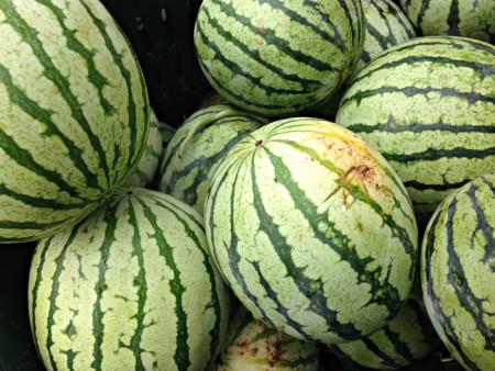 Yellow Watermelon from Blooming Glen Farm