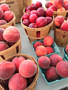 Nectarines & Peaches from Solebury Orchard