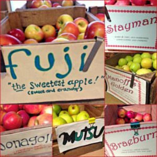 Manoff's Market Gardens, apples, Jonagold, Mutsu, Braeburn, Fuji, Stayman,