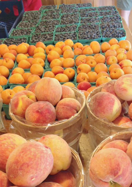 peaches_apricots_blueberries_Solebury Orchards_crop
