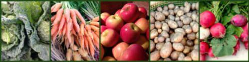 Fall produce in Bucks County; photo credit Lynne Goldman