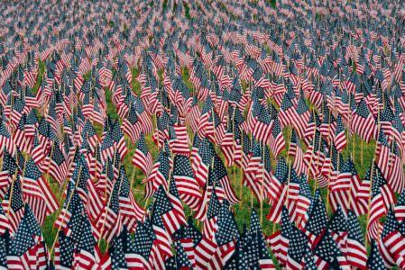 Veteran's Day, Unsplash.com