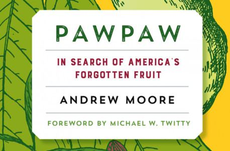 PawPaw by Andrew Moore