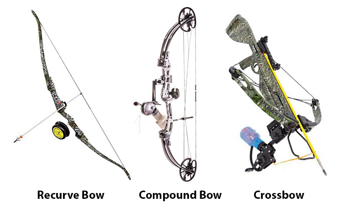 Types of Bowfishing Bows
